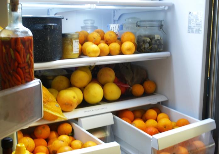 Oranges february 2