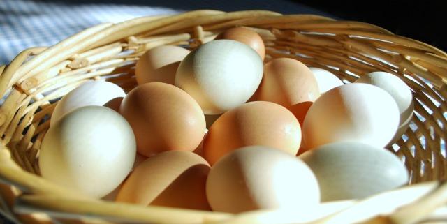 Eggs 1 sm